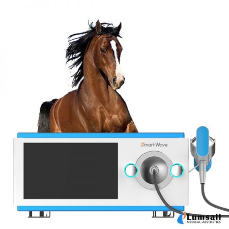 Veterinary Equine Shock Wave Therapy System Smartwave BS-SWT5000